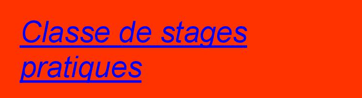 stages-pratiques